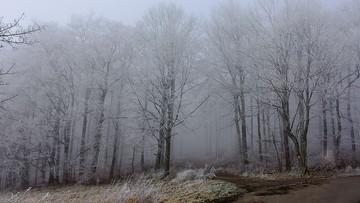 Przyszła wiosna. IMGW ostrzega przed śniegiem