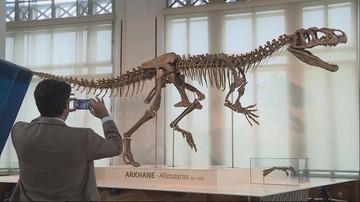 Milioner kupił szkielet dinozaura i wypożyczył go muzeum. Ale tylko na kilka miesięcy