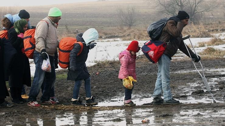 Szwecja zamierza wydalić nawet 80 tys. imigrantów