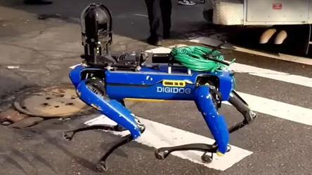 Zobacz, jak robo-pies Spot bierze udział w akcjach policji w Nowym Jorku [FILM]