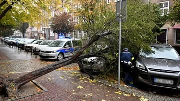 Silny wiatr zniszczył mobilny punkt pobrań w Gdańsku
