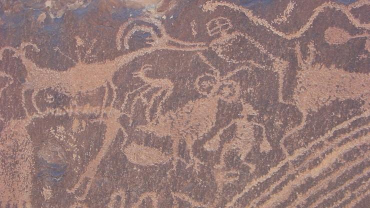 Tworzyli malowidła podczas halucynacji? Nowe badania nad prehistorycznymi artystami