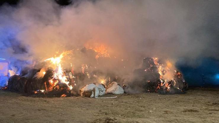 Lubelskie: Dwa pożary słomy w sąsiednich wsiach. Wielogodzinna akcja straży pożarnej