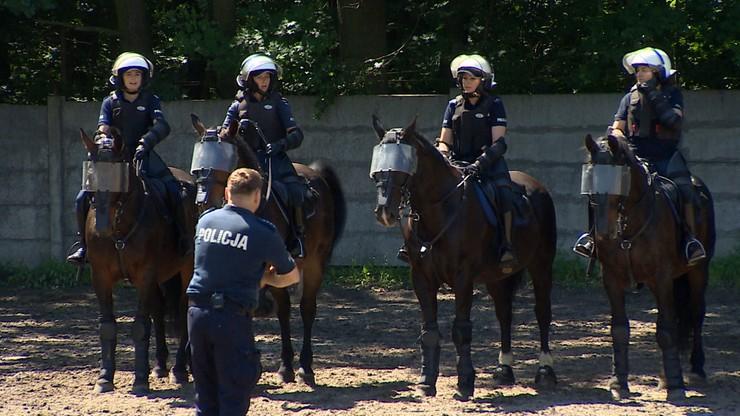 """""""Kiedy trzeba wzbudzają strach"""". Konie w policyjnej służbie [WIDEO]"""