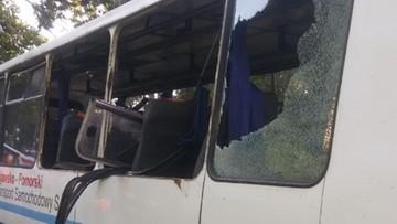 Jeleń uderzył w bok szkolnego autobusu. 16-latka trafiła do szpitala
