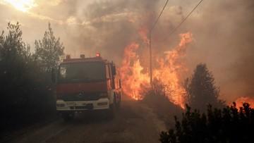 Polacy wśród ofiar pożarów w Grecji. Zginęli matka i syn