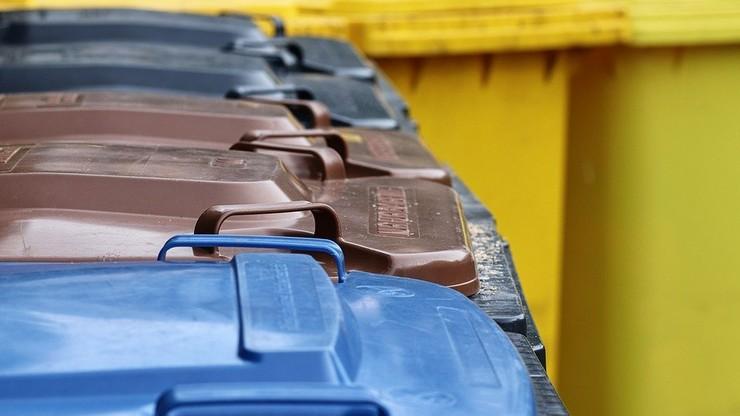 Ostatnie dni na rejestrację w Bazie Danych Odpadowych. Za brak wpisu grożą kary