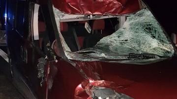 Jeleń zderzył się z samochodem. Pasażer trafił do szpitala