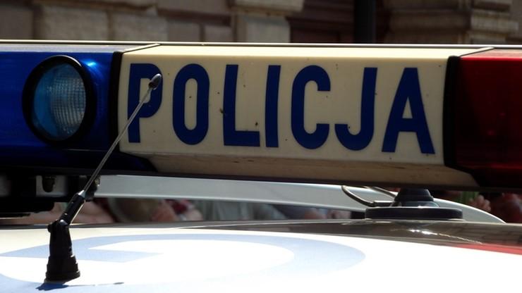 Udając 14-latkę, pomogła policji złapać pedofila