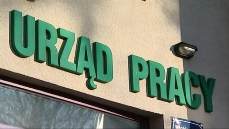 """Bezrobocie ciągle spada. """"Rynek pracy w Polsce rozkwita"""""""