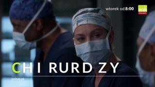Chirurdzy sezon 14