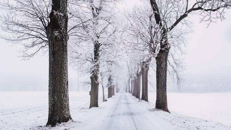 Prognoza na weekend. Arktyczne powietrze nad Polską