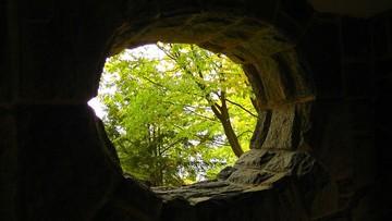 Turyści znaleźli w jaskini w lesie ukryty skarb