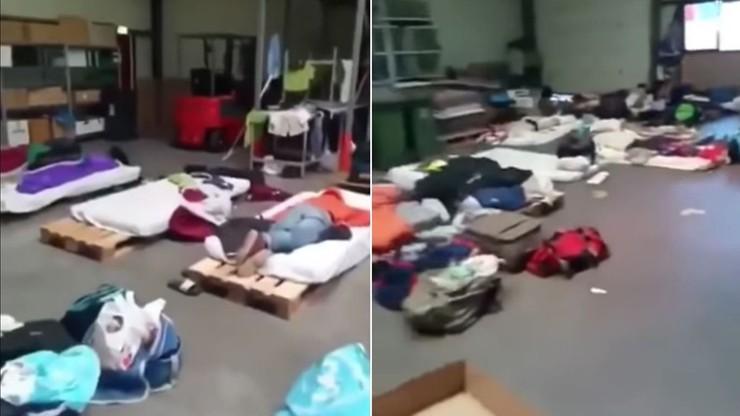 Polacy spali na paletach, kąpali się w rzece. Szef agencji pracy: to burza w szklance wody