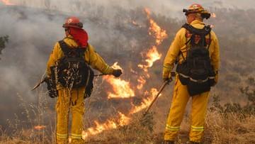 Prawie dwa tysiące strażaków walczy z pożarami lasów w Kalifornii