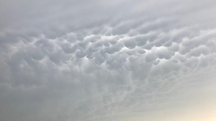 Nietypowe chmury nad Polską. To mammatusy, czyli tzw. krowie wymiona