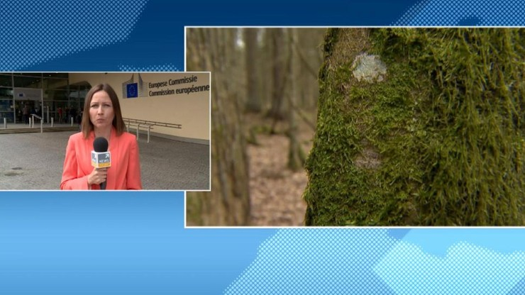 Komisja Europejska wszczęła wobec Polski procedurę o  naruszenie unijnych przepisów środowiskowych