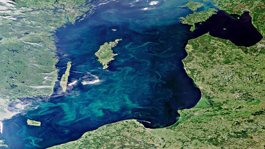 13.03.2019 07:00 Bałtyk umiera. Tak mało tlenu nie było w nim od 1500 lat. Tamtejsze martwe strefy są największymi na świecie