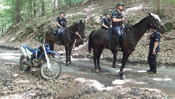 14 radiowozów, cztery konie, policjanci i strażnicy leśni. Uderzenie w quadowców niszczących las