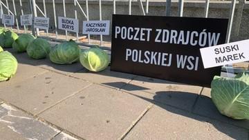 """356 kapuścianych głów przed Sejmem. """"Symbolizują puste łby posłów"""""""