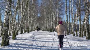 04.02.2021 00:00 Piękny zimowy weekend (4K)