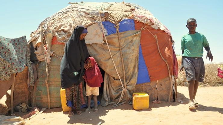 """""""Rok 2020 jest zły? 2021 będzie jeszcze gorszy"""". Agencja ONZ ostrzega przed klęską głodu"""