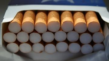 """Rozbito gang """"Pitola"""" w Szczecinie. Zarzuty dla sześciu osób o przemyt nielegalnych papierosów"""