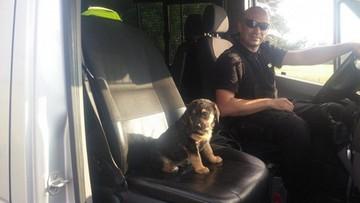 Policjant uratował maltretowanego szczeniaka i dał mu dom