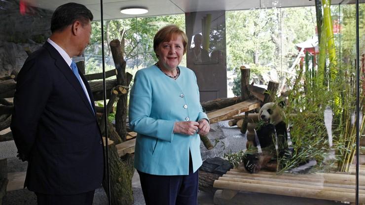 """""""Dyplomacja pod znakiem pandy"""". Prezydent Chin przekazał parę tych rzadkich zwierząt berlińskiemu zoo"""