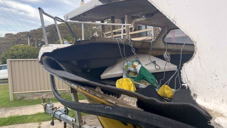 Australia. 18-latek w śpiączce po zderzeniu łodzi z wielorybem