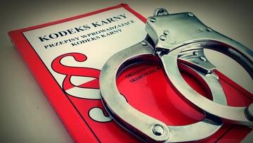 PO-KO apeluje do prezydenta o zawetowanie nowelizacji Kodeksu karnego