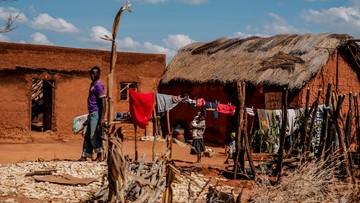 Eksperci: prezydentura Trumpa będzie trudnym czasem dla Afryki
