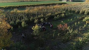Ich plony zniknęły! Dramat ponad setki rolników