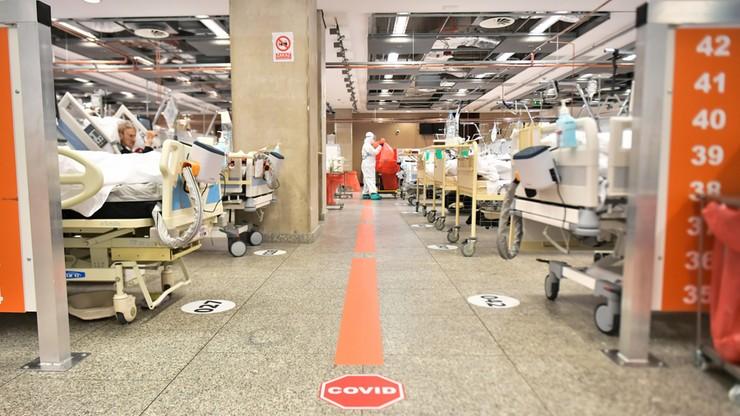 Obłożenie Szpitala Narodowego. Najnowsze dane