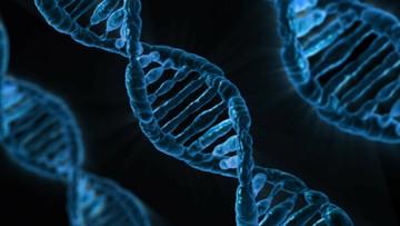 W dzieciństwie środowisko, potem geny. Niemieccy naukowcy zbadali co bardziej wpływa na nasze życie