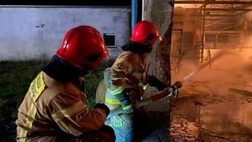 Pożar na Pomorzu. 19 zastępów strażaków w akcji [WIDEO]