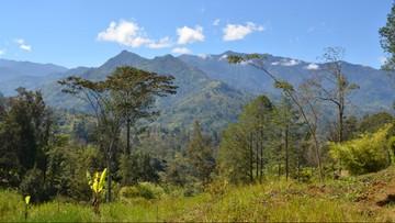 Trzęsienie ziemi o sile 6,2 w Papui-Nowej Gwinei