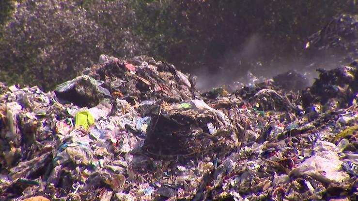 """Prokuratura Krajowa na tropie """"mafii śmieciowej"""". Zleciła analizę prowadzonych postępowań"""