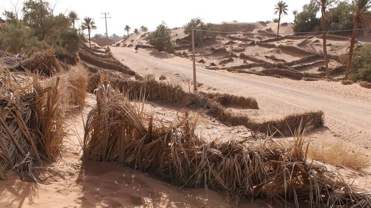 Ciężarówka wjechała w kanał irygacyjny. 16 ofiar wypadku w Maroku