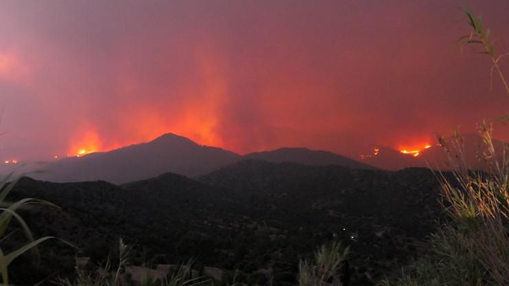 """""""Najgorsze pożary w historii kraju"""". 4 ofiary największego żywiołu na Cyprze od 1974 roku"""