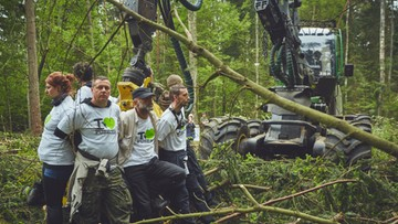 Kowalczyk: harwestery nie wrócą do Puszczy Białowieskiej