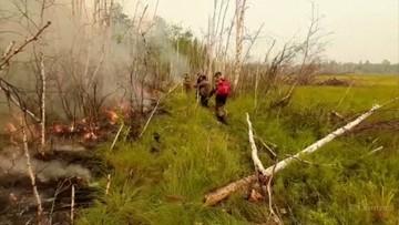 Rosja: dzień wolny w całym regionie z powodu pożarów lasów