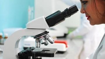 Testy na zwierzętach wykazują skuteczność szczepionki CureVac przeciw wariantom SARS-CoV-2