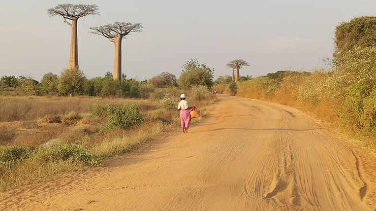 Abp Schick: Madagaskar umiera z głodu