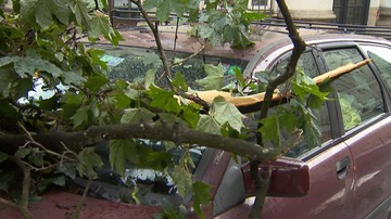 Połamane drzewa, zalane ulice. Potężne nawałnice przeszły nad południem Polski