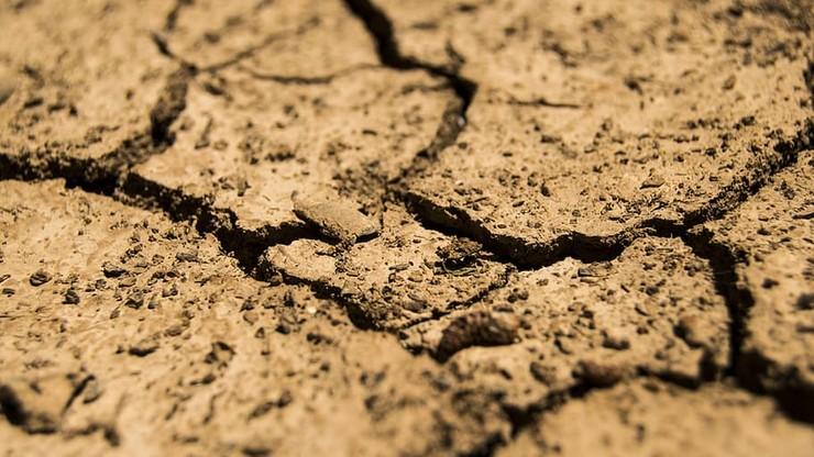 Mimo opadów deszczu brakuje wody. Susza w 9 województwach