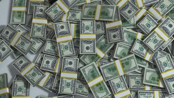 Pracownica pomocy społecznej ukradła... 17 mln dolarów