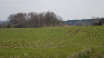 Będzie nowelizacja ustawy o obrocie gruntami rolnymi. Ma rozwiązać problemy z kredytami