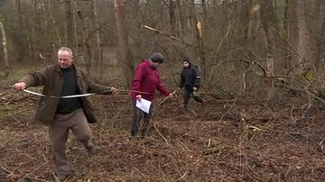 Wycięto las na prywatnej działce. Przez ziemię przechodzi linia energetyczna