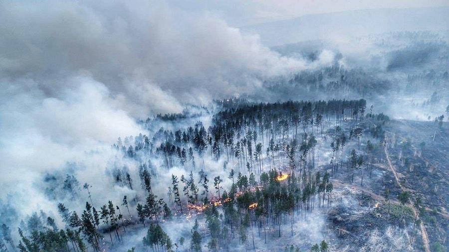Pożary lasów na Syberii z lotu ptaka. Fot. EPA / NASA.